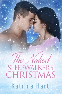 The Naked Sleepwalker's Christmas v2